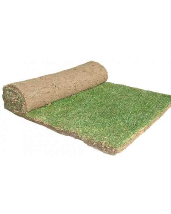 Premium Cultivated Turf per m2